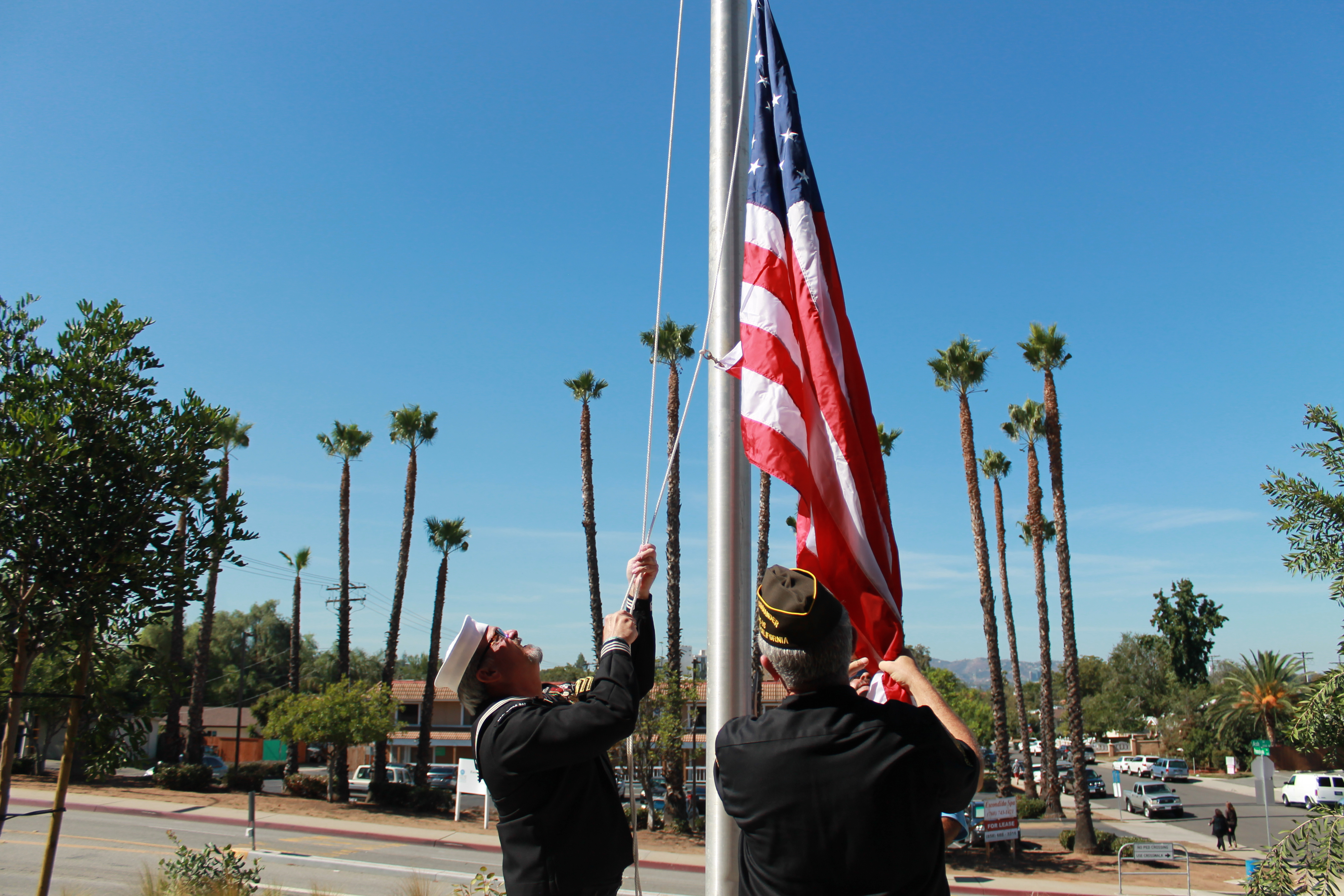 two vets hanging flag
